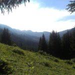 Naturzeit_4