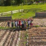Pflanzaktion für ein Kartoffelbeet mit der Mittelschule Kleinwalsertal im Sinne der Selbstversorgung