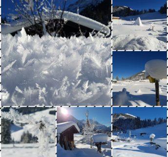 Permakultur im Winter